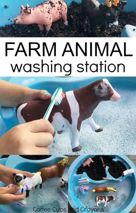 Washing Farm Animal Sensory Bin Farm Animal Washing Station Sensory Play for Toddlers and Preschoolers Nanny & Au Pair & Babysitter & Parenting & www.nannyprintabl& The post Washing Farm Animal Sensory Bin appeared first on Kristy Wilson. Farm Activities, Toddler Learning Activities, Montessori Activities, Infant Activities, Sensory Activities For Preschoolers, Animal Activities For Kids, 2 Year Old Activities, Montessori Toddler, Pre School Activities