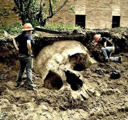 Giant Human Skeletons - Daily Manchester