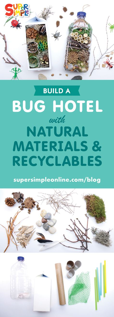 Whether you like them or hate them, bugs are part of our world and play an important part in our ecosystem. Click here to make your very own Bug Hotel.