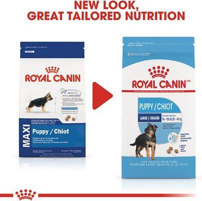Per Dr Toben Choice 1 Royal Canin Probiotic Digestive