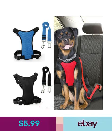 Pet Harnesses Pet Supplies Pet Dogs Dogs Seat Belt Harness