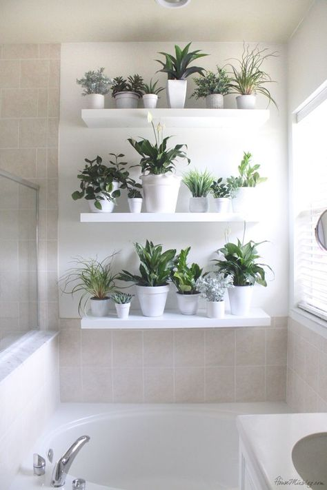 Bathroom plant wall with white pots and Ikea lack shelves
