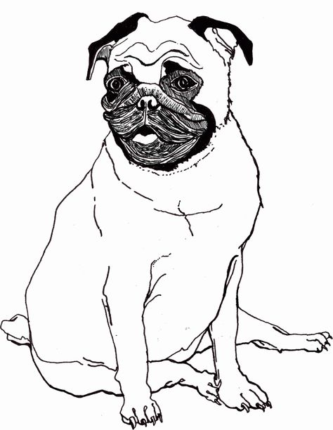 Free Printable Pug Coloring Pages Free Pug Coloring Sheets Kids
