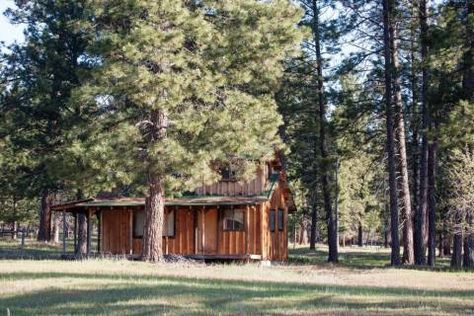 #cabin #inthewoods Camas Creek Ranch - Montana Ranches For Sale | Fay Rancheshttp://fayranches.com/ranches-for-sale/montana/camas-creek-ranch-hamilton-mt