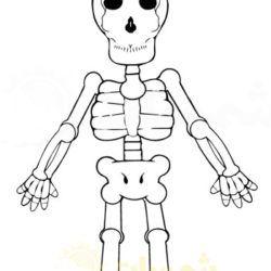 نشاط تلوين الهيكل العظمي للاطفال شمسات Vault Boy Bart Simpson Character