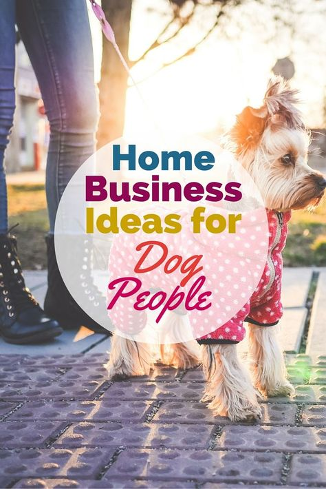 Turn your love of dogs into a lucrative canine career -- check out these home business ideas for dog people.