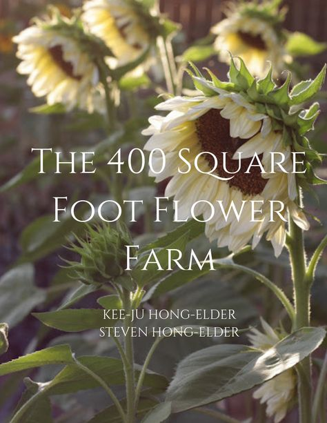 The 400 Square Foot Cutting Garden: The Flowers — the kokoro garden flower garden The 400 Square Foot Cutting Garden: The Flowers — the kokoro garden Gardening For Beginners, Gardening Tips, Gardening Zones, Cut Flower Garden, Flower Gardening, Flower Garden Plans, Garden Plants, Flowers For Cutting Garden, Cut Garden