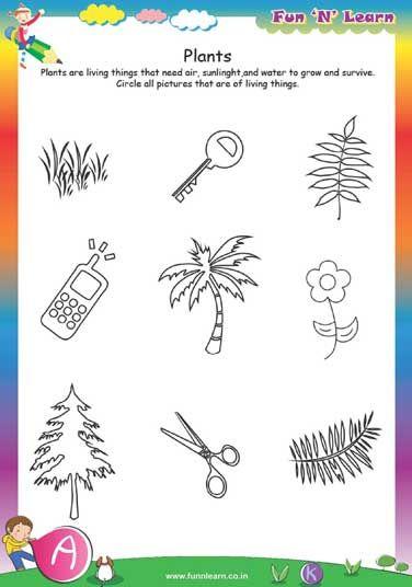 plants - worksheets for lkg kids | Lkg worksheets ...
