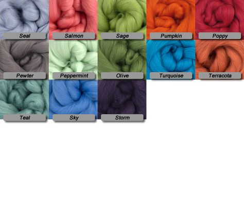 Merino Wool Top 23 Micron Peppermint