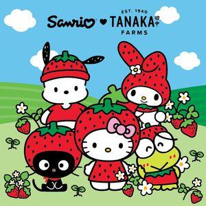 Spring into Strawberry Season with Sanrio and Tanaka Farms Hello Kitty Backgrounds, Hello Kitty Wallpaper, Pochacco, Sanrio Wallpaper, Cute Poster, Kokeshi Dolls, Matryoshka Doll, Hippie Art, Sanrio Characters