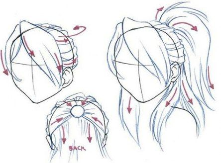 Hairstyles Ponytail Drawing 22 Ideas Ponytail Drawing How To Draw Hair Manga Hair