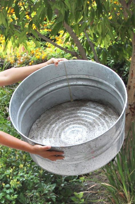 Easy Diy Solar Fountain In 1 Hour With Pond Water Plants Diy Solar Fountain Solar Fountain Water Features In The Garden