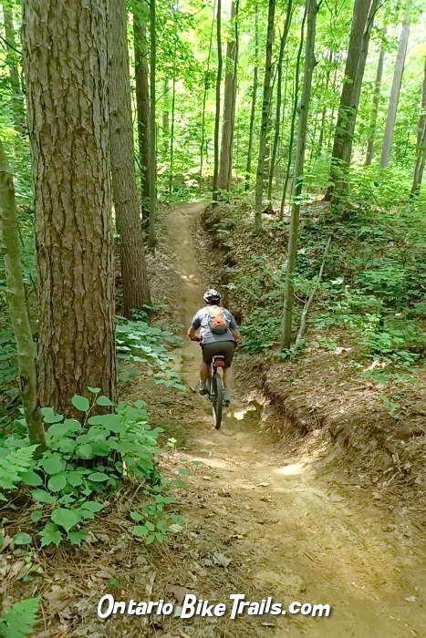 Larose Forest Mtb Trail Mtb Trails Ski Trails Bike Trails