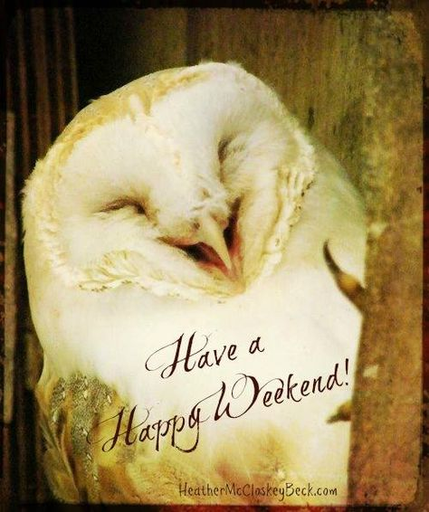 Have a Happy Weekend - Laugh, Love and bring in your Joy. <3