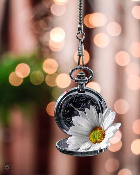 160 خلفيات Ideas In 2021 Beautiful Flowers Flower Wallpaper Flowers Photography