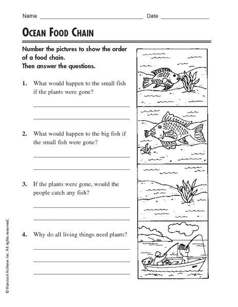 Worksheet Free Food Chain Worksheets Caytailoc Free Printables Worksheets For Students Food Chain Worksheet Food Chain Basic Sight Words