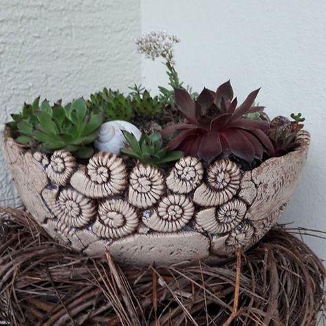#ceramic #ceramica #keramik #gardenceramics #gartenkeramik #hauswurz #handmade #töpfern #ceramicbowl #gartendekoration #vaseideen #ceramic #ceramica #keramik #gardenceramics #gartenkeramik #hauswurz #handmade #töpfern #ceramicbowl #gartendekoration