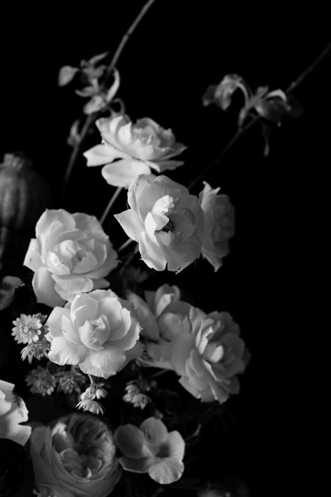 Black and White Floral by Emilia Jane Schobeiri - A close up on a beautiful Dutch Master style floral arrangement by Fleur in Chicago Black And White Roses, Black And White Picture Wall, Black And White Wallpaper, Black Aesthetic Wallpaper, White Wall Art, Black And White Aesthetic, Dark Wallpaper, Black And White Pictures, Aesthetic Iphone Wallpaper