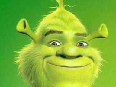 Relationship Adjourn Shrek Memes Really Funny Memes Funny Relatable Memes