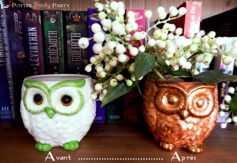 DIY Owl Decorations/ time to hit up the thrift stores!!!(bathroom)
