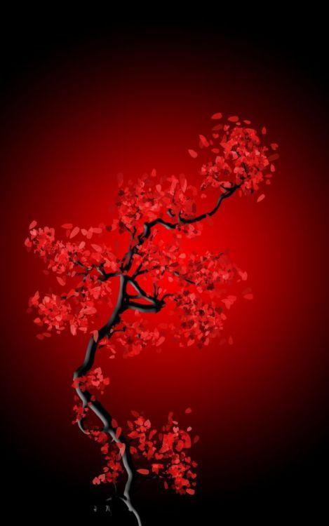 Black And Red Blossom Photo Noir Et Blanc Paysage Esthetique Rouge Fond D Ecran Rouge