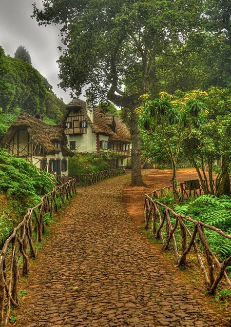 (Dreamland by Petr Marek on Madeira - Portugal) I absolutely LOVE that fencing! And not to mention the house and the quaint little path would be an insult. Storybook Homes, Storybook Cottage, Places Around The World, The Places Youll Go, Around The Worlds, Beautiful World, Beautiful Places, Trees Beautiful, Exterior