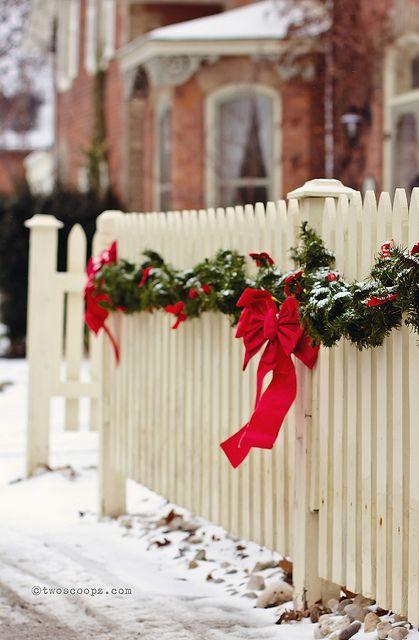 Christmas on the fence