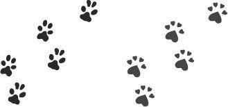 最高の壁紙 ベストセレクション 犬 足跡 イラスト フリー 犬 足跡 イラスト 無料 イラスト 素材 イラスト