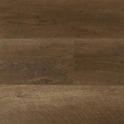 Timeless Designs Irresistible Forest Oak Spc Vinyl Plank Flooring