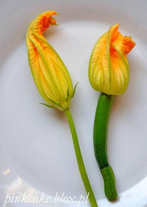 Kwiaty Cukinii W Ciescie Nalesnikowym Zolte Kwiatki Na Talerze Zapraszamy Vegetais