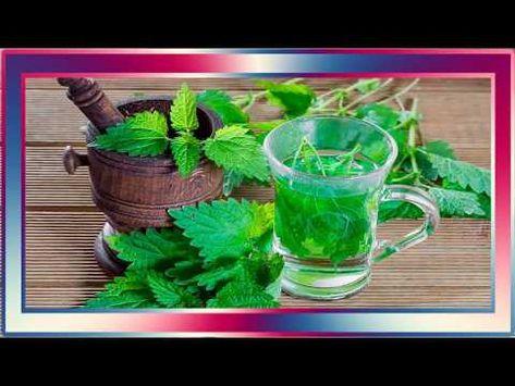 curar la próstata con hierbas y aceite de aloe vera
