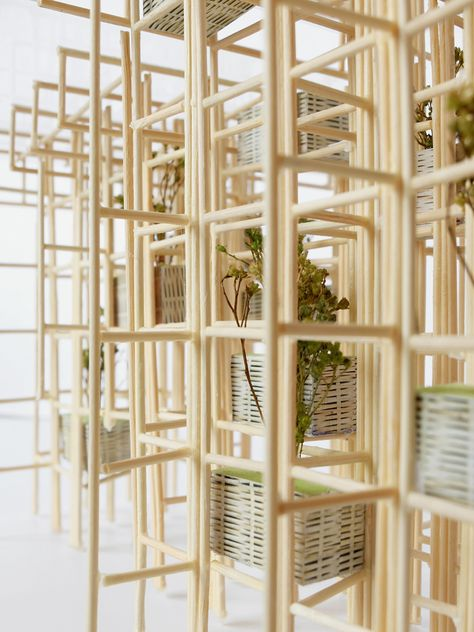 Gallery of Vo Trong Nghia Architects Unveil Fugitive