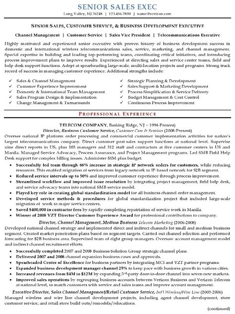 sample resume sales executive position templates free samples - telecommunications manager resume