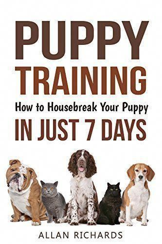 Dog Behavior Training To Housebreak Your Puppy How To Potty Train