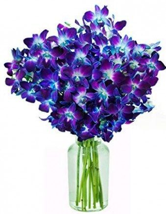 Great Free Orchid Flower Bouquet Concepts Have A Attractive Orchid In The Home That You Re Not Really Gu Orchid Flower Dendrobium Orchids Fresh Flower Bouquets