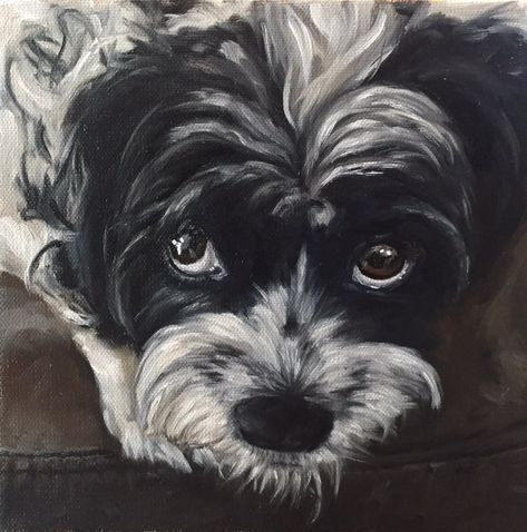 How To Paint A Dog Portrait Shelley Hanna Fine Art Dog Portraits Painting Dog Portraits Animal Drawings