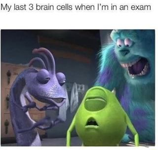 My Last 3 Brain Cells When I M In An Exam Ifunny Some Funny Jokes Funny Smile Disney Funny