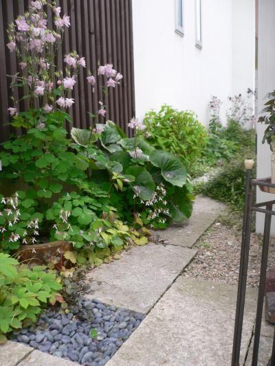 北側玄関周り 庭 庭 づくり 庭 ガーデニング