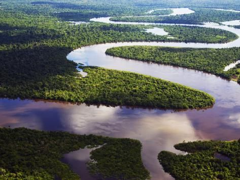 Amazon Amazon River Bends In The Nanay River A Tributary Of The