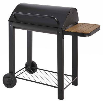 Barbecue Charbon De Bois Blooma Zephyr Bois Castorama Et