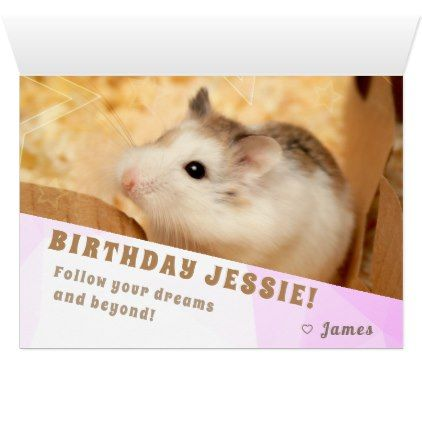Hammyville Hamster Surprise Happy Birthday Card Birthday Cards Invitations Party Diy Personalize Customi Happy Birthday Cards Birthday Cards Happy Birthday