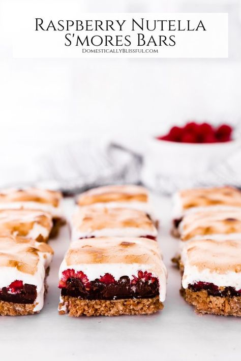Raspberry Nutella S'mores Bars