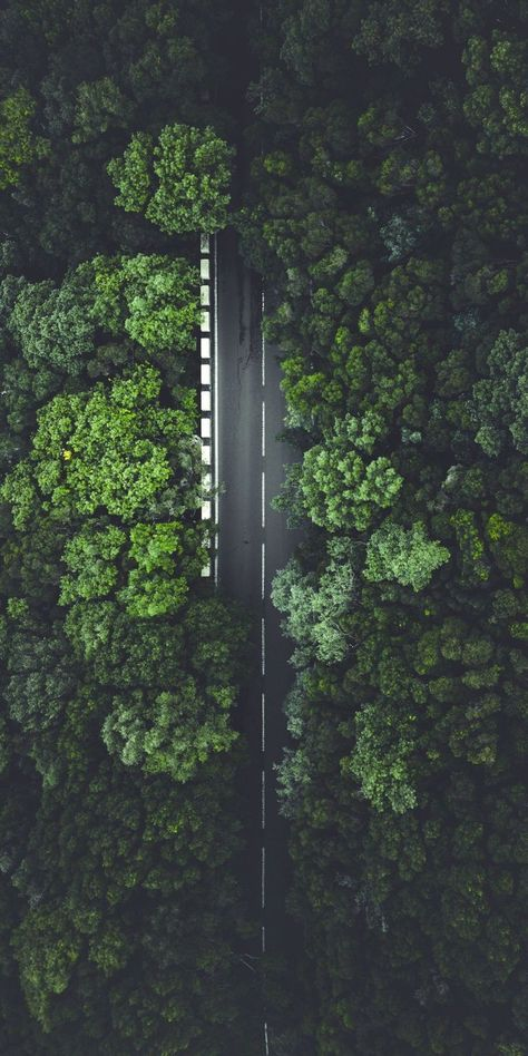 Green highway aerialview verticallandscape is part of Aerial photography drone - Aerial Photography, Landscape Photography, Nature Photography, Scenic Photography, Night Photography, Photography Tips, Motorcycle Photography, Fotografia Drone, Natur Wallpaper