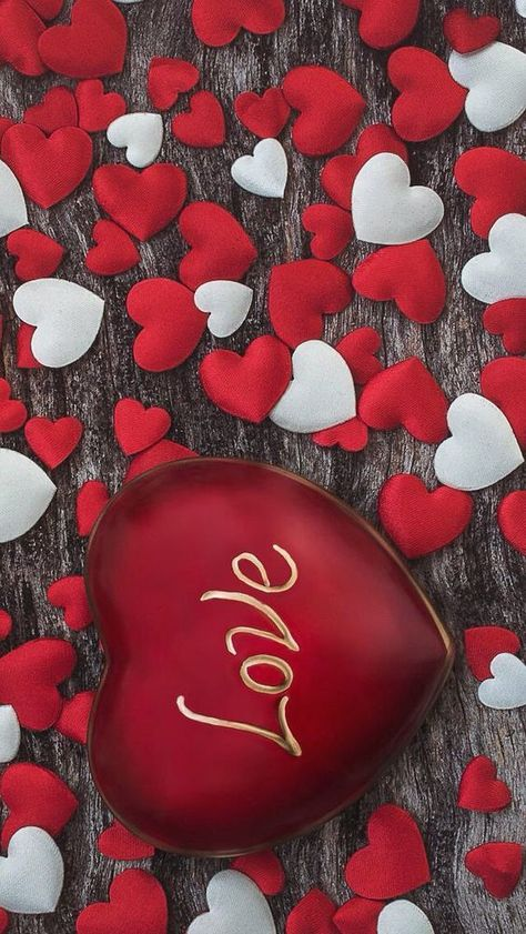 Valentines day is about to come and how about wishing your valentine with an amazing message. Send the lovely message to your Valentine. Happy Valentines Day everybody.