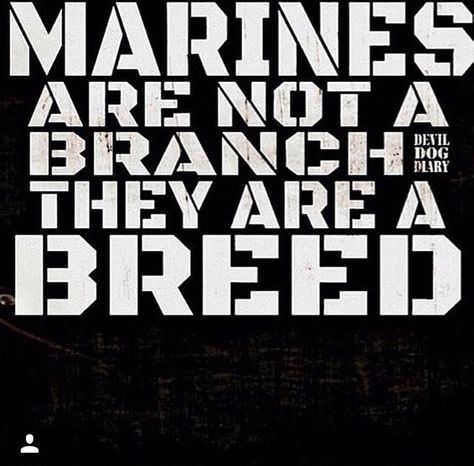 Marines are a breed Marine Quotes, Usmc Quotes, Military Quotes, Military Mom, Military Terms, Military Humour, Marine Corps Humor, Us Marine Corps, Marine Corps Tattoos