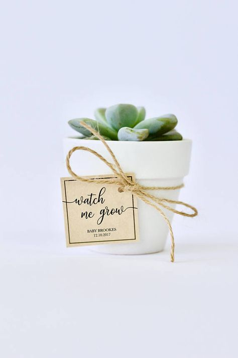 If you are looking for a unique but simple (and cheap!) DIY Baby Shower Favor for your guests, then look no further!  This printable Watch me Grow Tag is customised with your details, and sent to you in high resolution JPG and PDF files for you to print. Choose kraft paper, white/cream paper, or really any coloured card that suits your Baby Shower theme! Then simply attach to your potted plant with twine or paper strands and you are done! Use mini terracotta pots, small jars or tins - th...