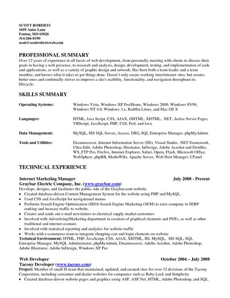example of skills summary for resume resume summary objective - Java Web Sphere Developer Resume