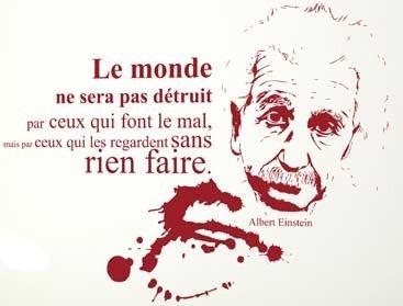 #Citation  #Einstein Agissez pour protéger la #planete