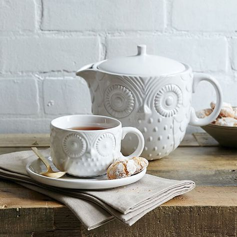 Owl Tea Collection - I need this! After all I am a Temple Owl!