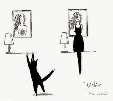 Artistic Cat Uses His silhouette To Create Funny Images